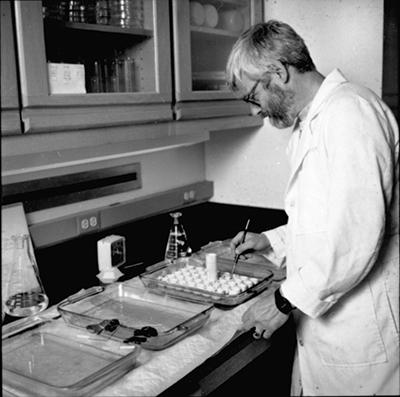 Photo of Jon Kaas in research lab