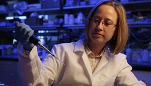 New studies take crucial steps toward transplanting retinal ganglion cells.
