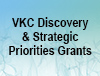 Three Nicholas Hobbs Discovery Grants and two Director's Strategic Priorities Grants have been awarded for 2018-19, announced Jeffrey L. Neul, M.D., Ph.D., Vanderbilt Kennedy Center director, Annette Schaffer Eskind Chair, and professor of Pediatrics and Pharmacology.